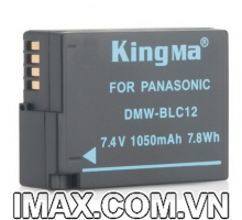 Pin Kingma cho Panasonic DMW-BLC12