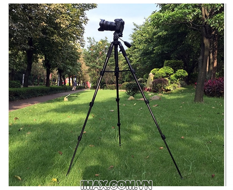 Chân máy ảnh Tripod Beike Q-111 10