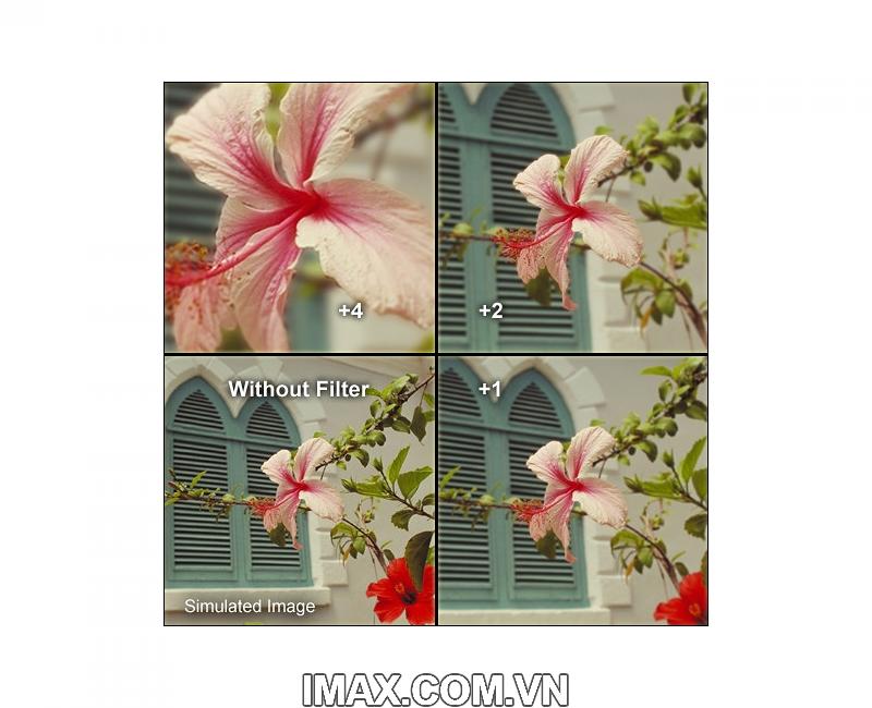 Kính lọc Filter Hoya Close up + 4 62mm 6