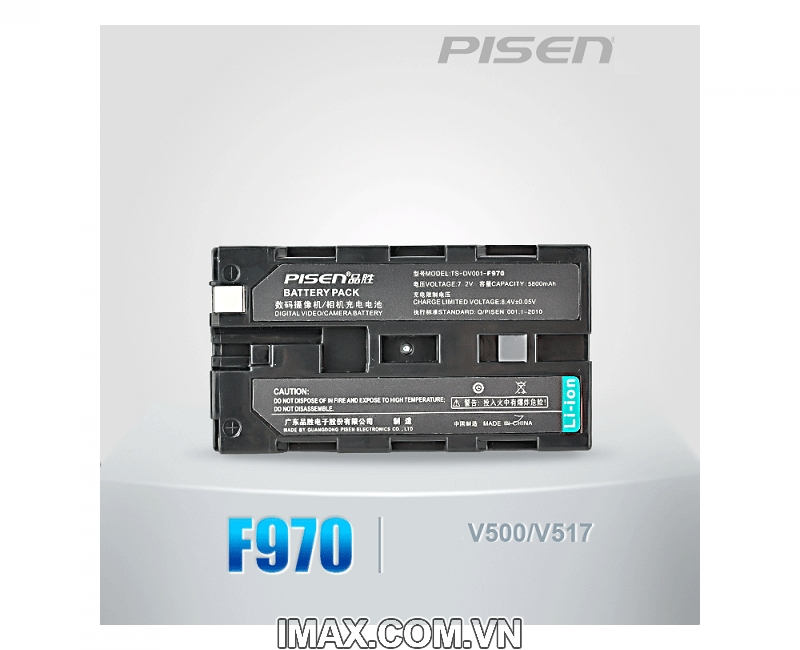 PIN PISEN FOR SONY F970 4